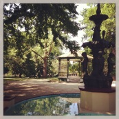 Cook Park, Orange NSW